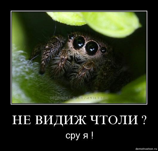 post-17260-1236795073_thumb.jpg