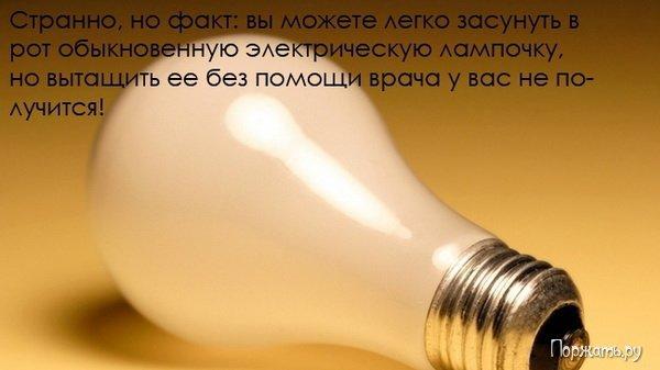 post-12477-1269082608_thumb.jpg