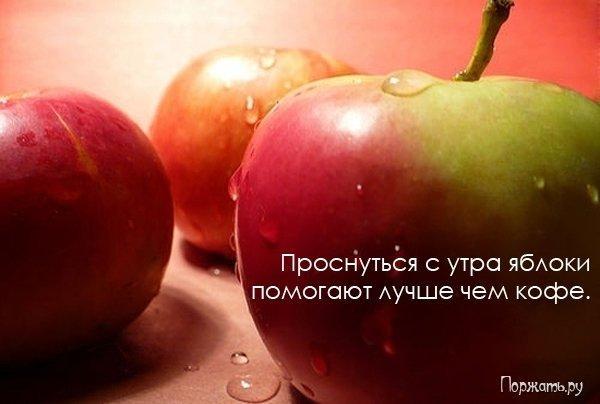 post-12477-1269082880_thumb.jpg