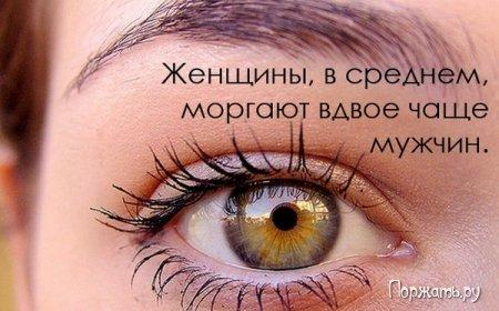 post-12477-1269082935_thumb.jpg