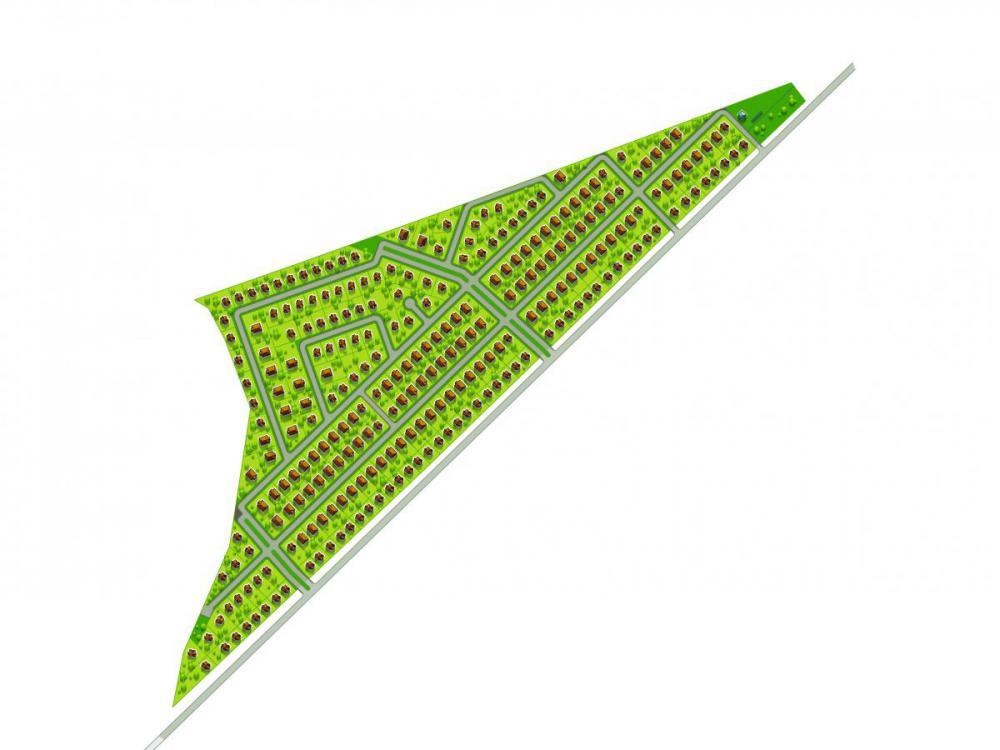 ласточки ген план.jpg