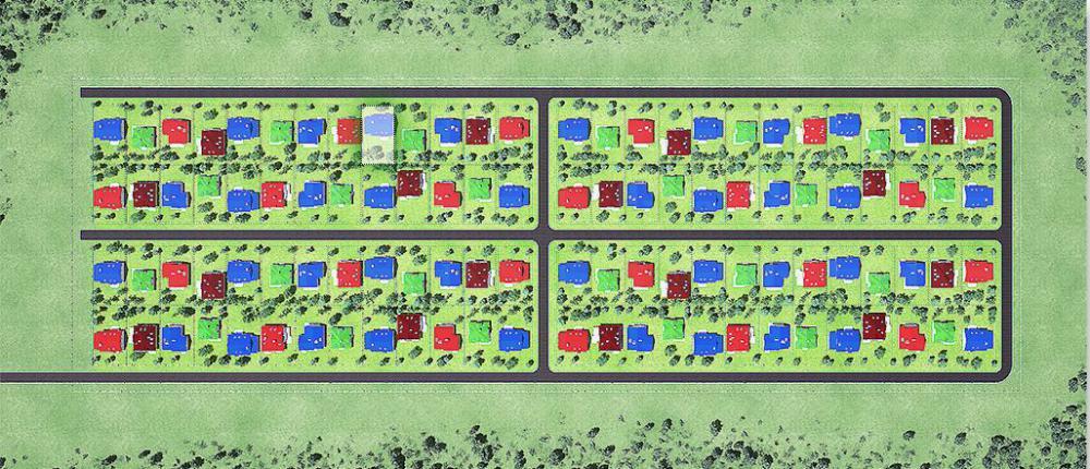 петровский ген план.JPG