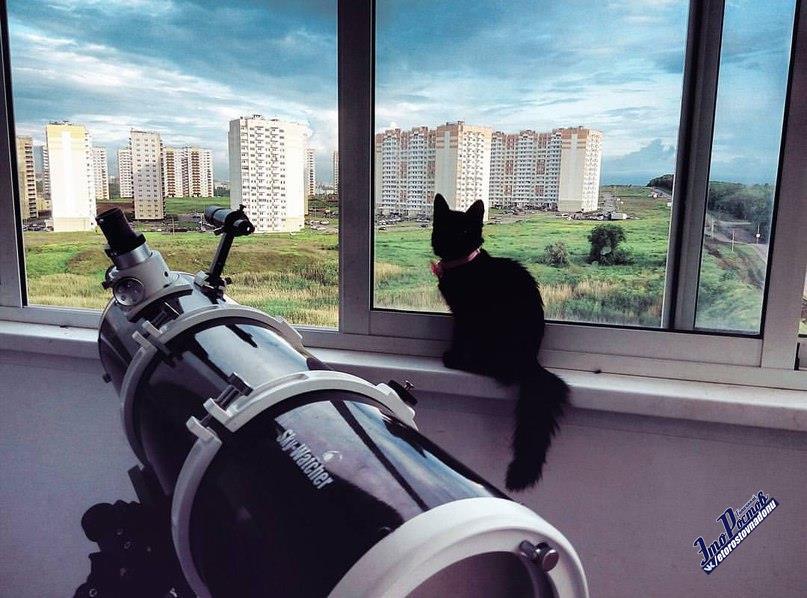 телескоп на суворовском в ростове.jpg