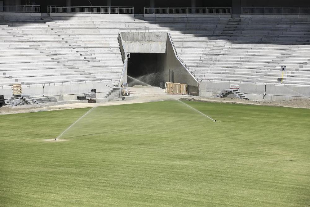 трава на поле стадион ростов арена фото.jpg